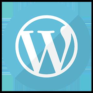 WordPress web development course in karachi
