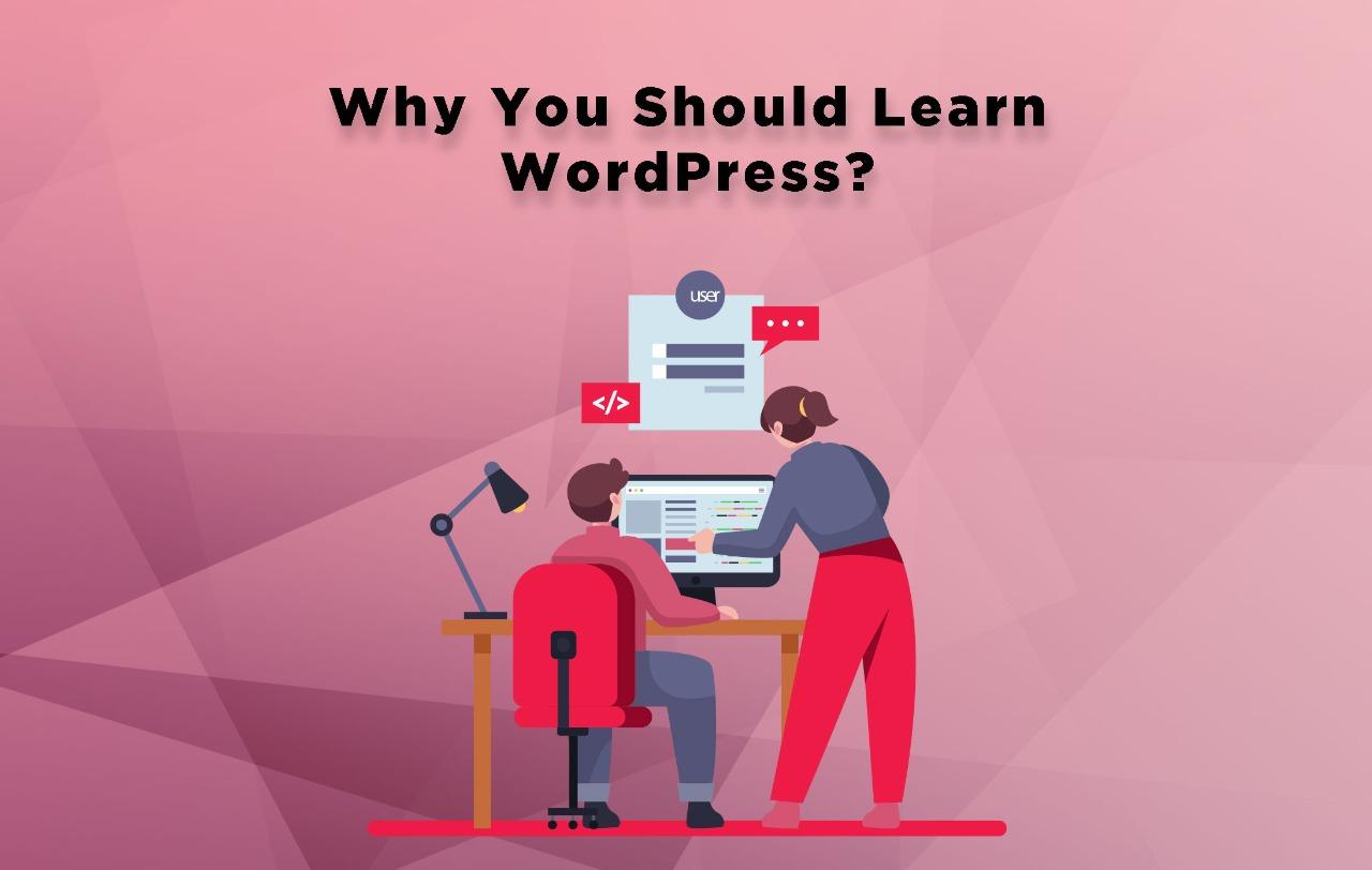Why You Should Learn WordPress - Digital Minds Pakistan