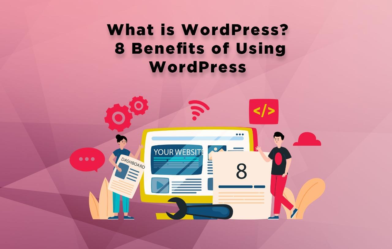 What is WordPress - 8 Benefits of Using WordPress - Digital Minds Pakistan